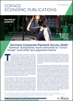 Germany Corporate Payment Survey 2020